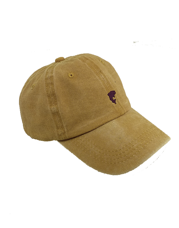 Baseball cap Marrus golden